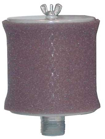Solberg Inlet Filter, 1 MNPT Out, 55 Max CFM FT-19P-100