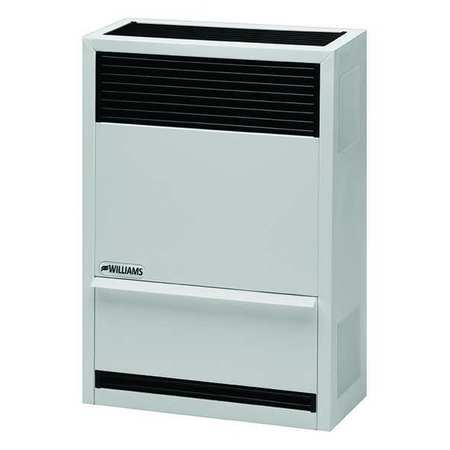 Williams Comfort Products Surface-Mount Gas Wall Heater,  Propane,  Direct Vent Vent Type,  Gravity Convection 1403821