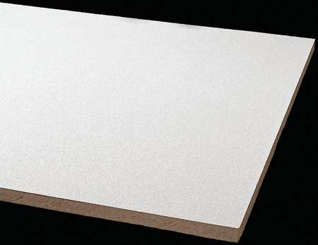 Armstrong Clean Room Ceiling Tile,  24 in W x 48 in L ,  PK8 870B