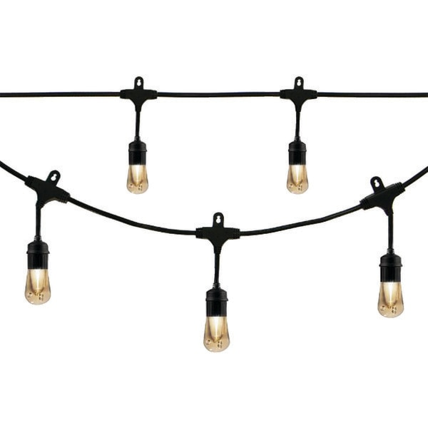 Enbrighten Café Vintage Vintage 24-Acrylic Bulb 48 ft. LED Café Lights 35631