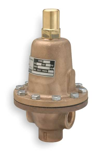 Cash Valve Pressure Relief Valve, 2 In, 65 psi 13768-0065