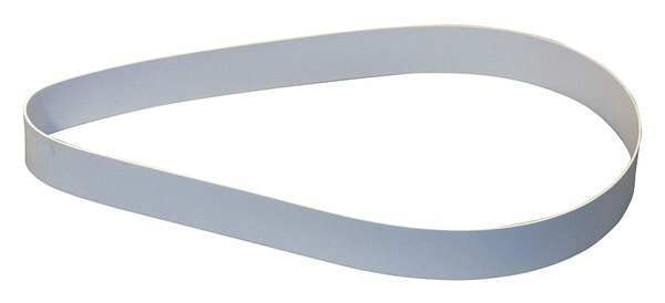 Zebra Skimmers Corp. Replacement Belt, Poly, 8 in. BP-08