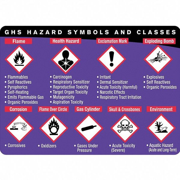 Labelmaster Training DVD, Workplace Safety, , PK25 GHISTRNWC1