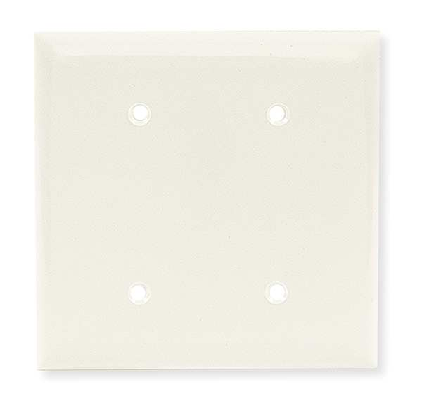 Hubbell Wiring Device-Kellems Blank Strap Mount Plate, 2 Gang, White NP24W